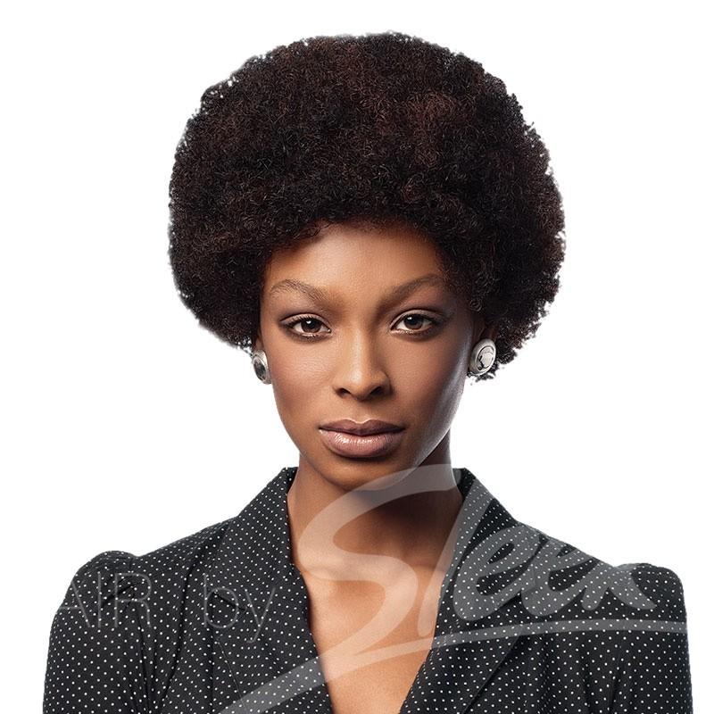 Afro 100% Human Hair Wig
