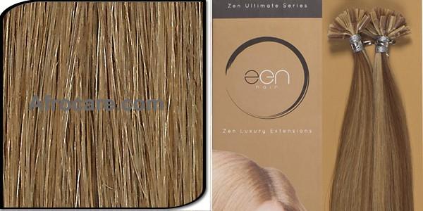 Zen Ultimate U-Tip Hair Extensions 14 inch Colour #10