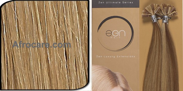 Zen Ultimate U-Tip Hair Extensions 14 inch Colour #12