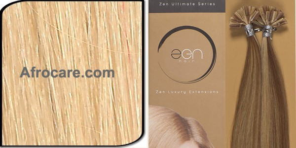 Zen Ultimate U-Tip Hair Extensions 14 inch Colour #22