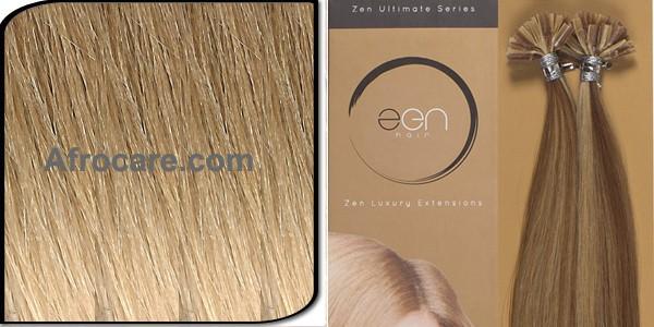 Zen Ultimate U-Tip Hair Extensions 14 inch Colour T18-22