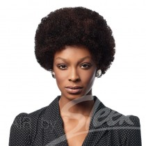 Afro 100% Human Hair Wig