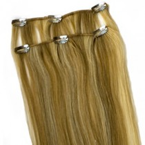 1st Lady Clip in Silky Straight-2 Pcs