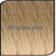 Ombre T18-22